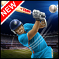 Grillo Potencia T20 Juego - Cricket Games